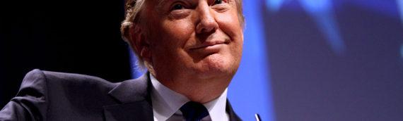 【479】 大統領選後にアメリカの映画人が抱える苦悩とは?