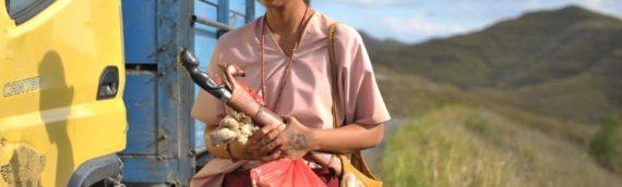 マカロニの残虐×アジアの諦念を打ち破る、生きる力の逞しさ『マルリナの明日』